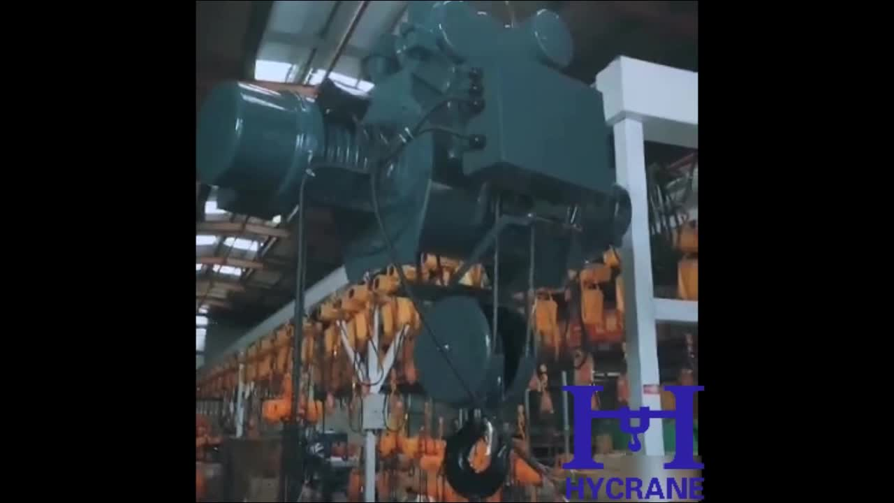 Motor lifting electric hoist price factory
