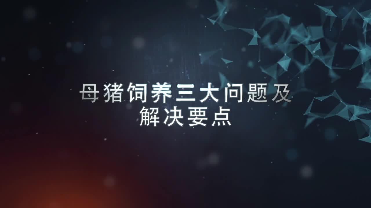 视频:母猪饲养三大问题及解决要点(梁宁)