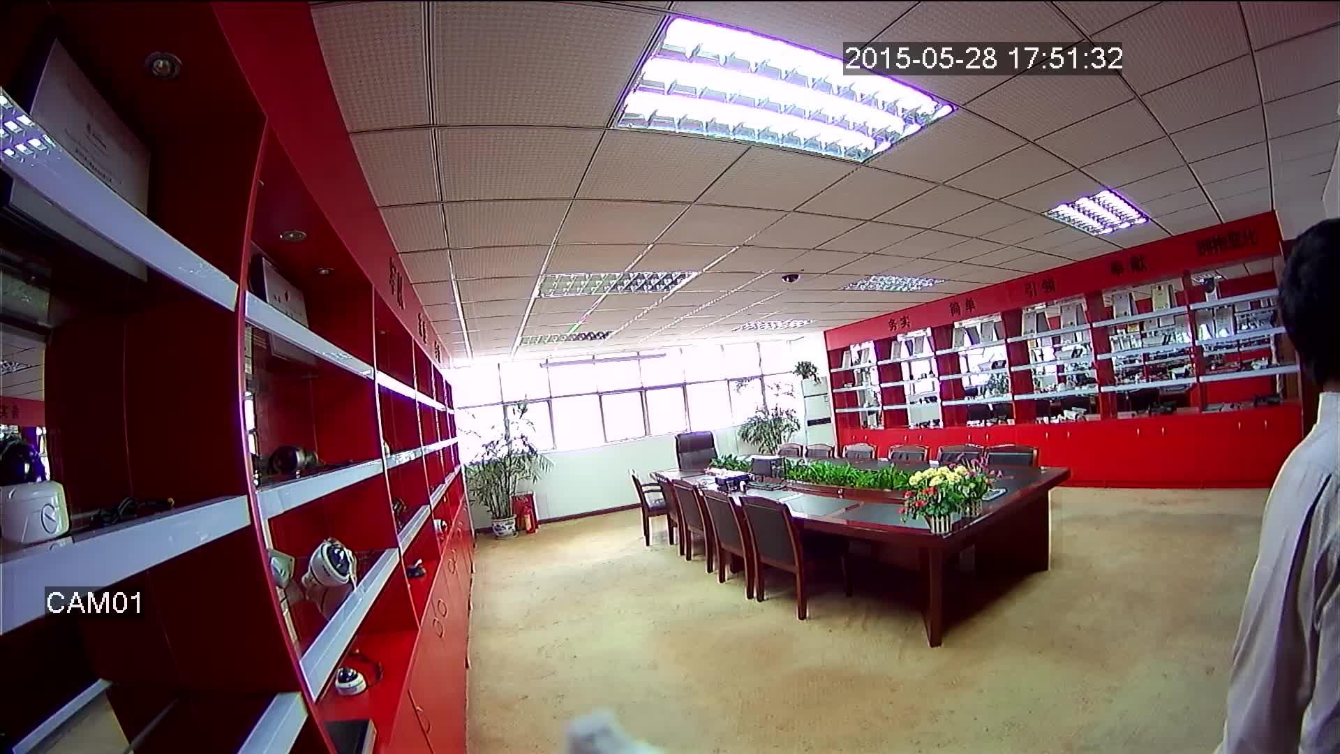 700TVL Sony CCD analog cctv Camera 180 degree fisheye security camera