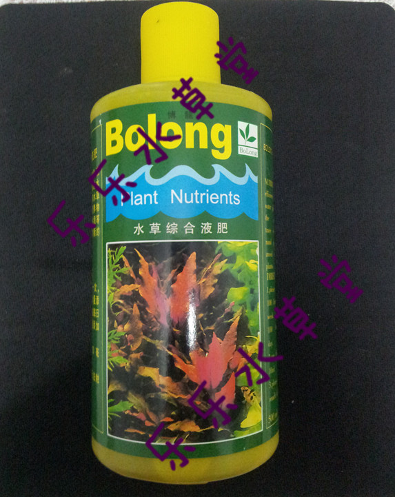 Bolong  500ml