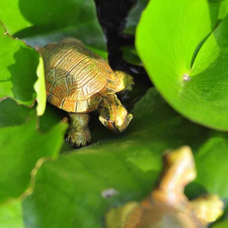 可爱仿真逼真树脂小乌龟 家居饰品摆件 买小乌龟送小青蛙 超值