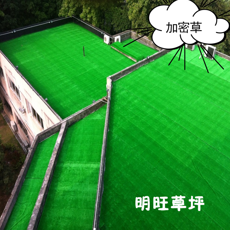 Encryption/simulation of plastic grass/artificial turf artificial turf carpet/turf/lawn/step on kindergarten