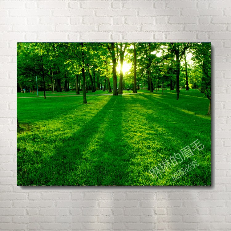 Hao Tong Sunrise Woods Pattern Framless Modern Art Decorative Painting