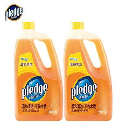 碧丽珠木地板清洁剂500g*2瓶 实木复合地板清洁剂去污去蜡清洁液