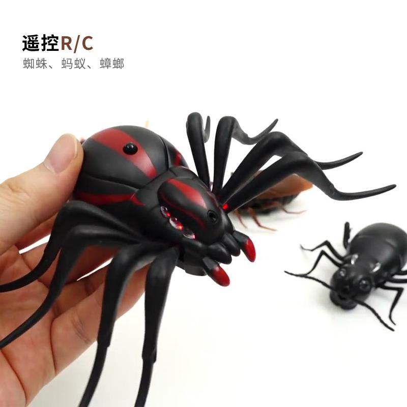 遥控蜘蛛 蚂蚁 蟑螂 愚人节礼物