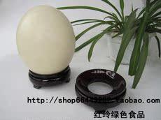 Гравировка страусиного яйца