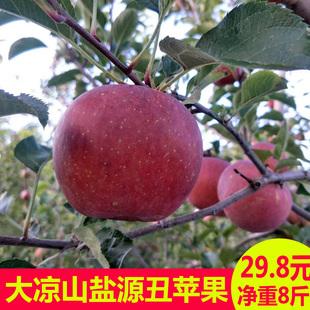 现摘大凉山盐源丑小苹果新鲜应季富士孕妇水果带箱10斤