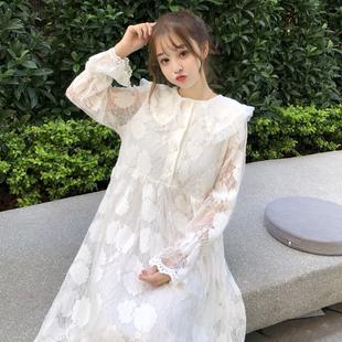 小清新长袖打底裙连衣裙女秋冬季女装气质显瘦中长款娃娃领蕾丝裙