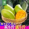 越南进口青芒果当季芒果10斤新鲜水果 玉芒香芒果整箱
