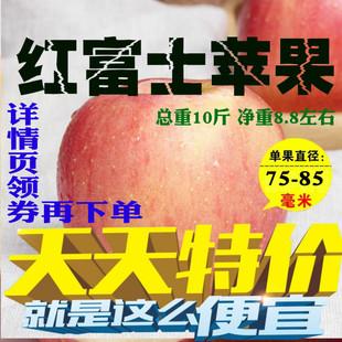 新鲜陕西红富士丑苹果10斤装一整箱当季脆甜孕妇水果代发