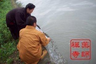 Религиозная атрибутика Фармацевт храм восемь Лунный Новый год в начале февраля летию хорошее везение жизни монах благословение Будды Шакьямуни