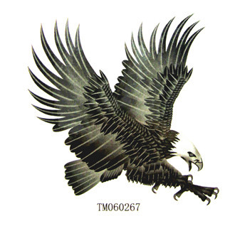 sunny纹妆 满35元包邮 防水 纹身贴纸 扑食的老鹰 纹身贴tm060267