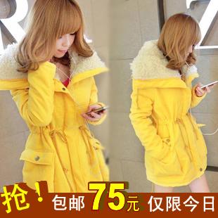 Женская утепленная куртка my095q Облегающий покрой Длинный рукав Осень 2012