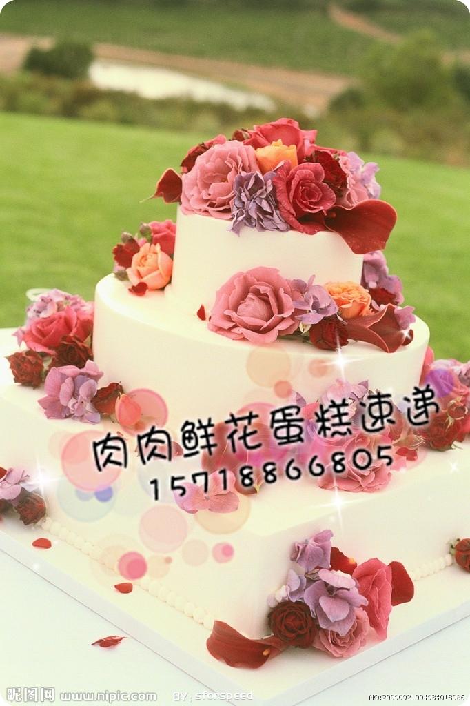北京/预订婚礼蛋糕免费配送/结婚蛋糕速递/多层鲜奶水果蛋糕NO.46