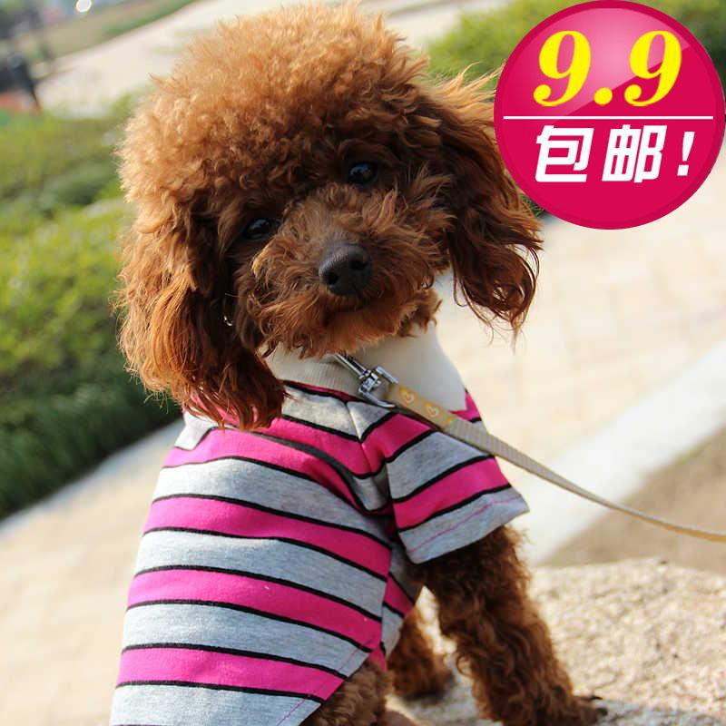 宠物服饰 春夏宠物衣服小狗狗衬衫 泰迪贵宾博美翻领横条狗衣服