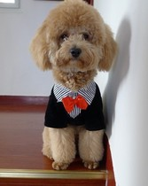 VIP Teddy dog clothes pet clothes suit dress a gentleman enough to spring and autumn shuai