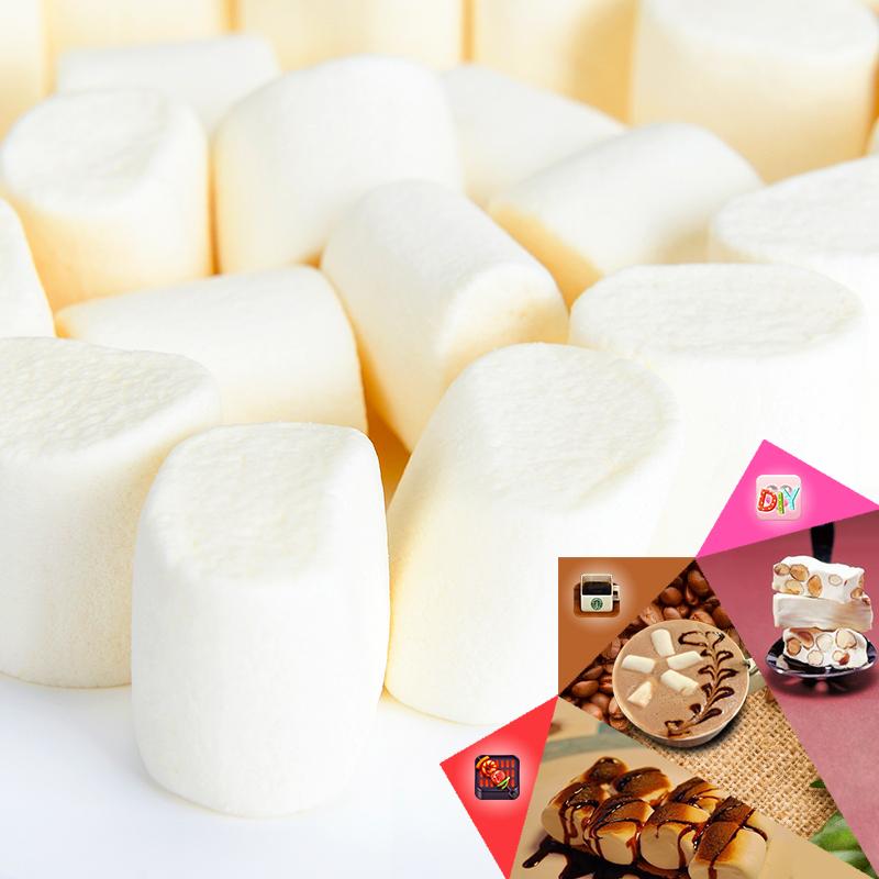 盛之花 500g烧烤必备可可咖啡伴侣做牛轧糖 椰奶味棉花糖 包邮