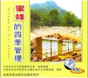 最新蜜蜂养殖技术大全/养蜂技术/中蜂意蜂养殖视频8光盘3书籍正品