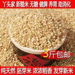 新糙米沂蒙山区大米有机糙米有机胚芽营养大米 绿色养胃250g
