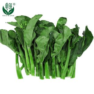 【粤旺】绿色新鲜有机蔬菜 芥兰芥蓝白花芥蓝 500g