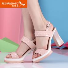 红蜻蜓女士凉鞋 夏季粗跟露趾女鞋 正品方根高跟休闲鞋子图片