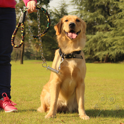 Anti-bite-proof dog collar chain punch Golden Satsuma in the large dog leash dog rope shipping