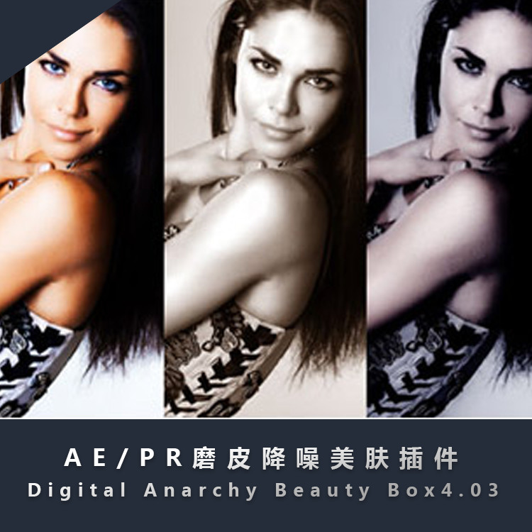 AE/PR磨皮降噪美肤插件 Digital Anarchy Beauty Box4.03