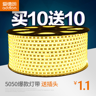 爱德朗LED灯带5050/2835双排客厅吊顶彩色光带七彩户外防水软灯条