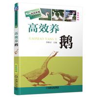 高xiao养鹅 双色印刷 养鹅技术书籍 鹅饲养标准和饲料配方 鸭鹅常见病诊断