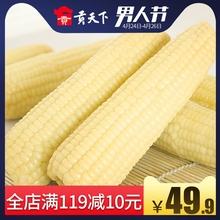 东北粘玉米穗甜糯米玉米棒非转基因白玉米220g15真空包装苞米