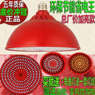 LED生鲜灯猪肉灯水果店专用灯蔬菜卖肉卤肉卤菜熟食红色照肉档灯