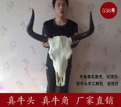 牦牛头骨工艺品 真牛头装饰品 牛羊头骨标本 特色手工艺品牛头