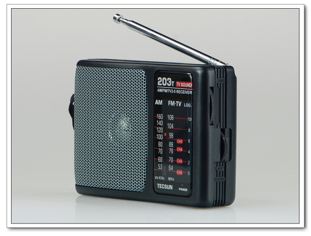 R-203T FM/MW Radio/TV Sound Radio