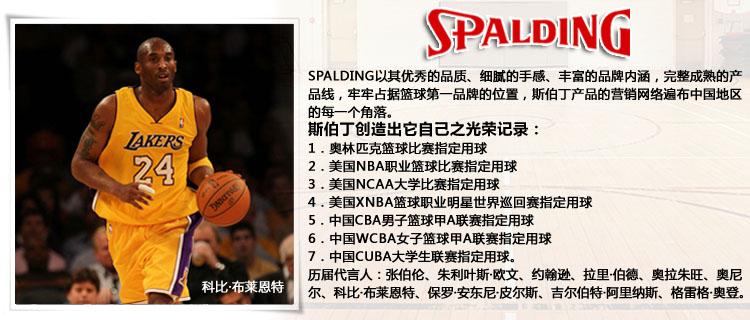 伯丁篮球PU皮NBA热火队队徽室内外篮球74 098图片