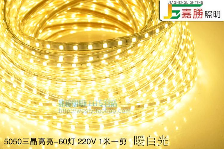 светодиодный дюралайт   LED 3014/5050 120 - 12