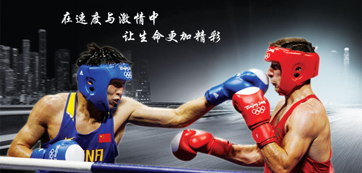 Kangrui anchoring Oxford cloth armor protector professional boxing training in Sanda competition 2053-2