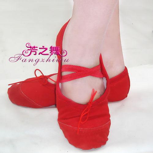 Обувь для гимнастики Fang of the Dance