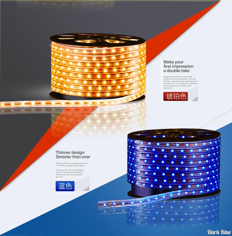 светодиодный дюралайт Delixi  LED 3528 60 - 2