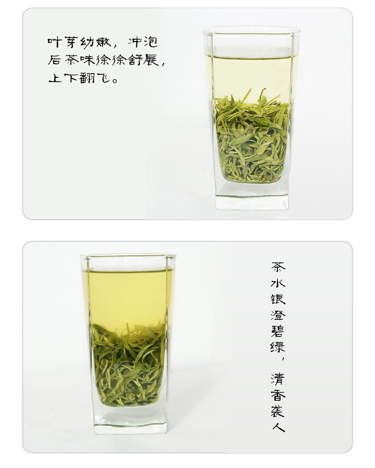 Bai Xiang set 2013 new green tea a Dongting Biluochun 500g pair canned flavor factory direct Free Shipping