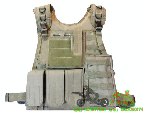 Жилет армейский The specter of military CP Molle CS The specter of military