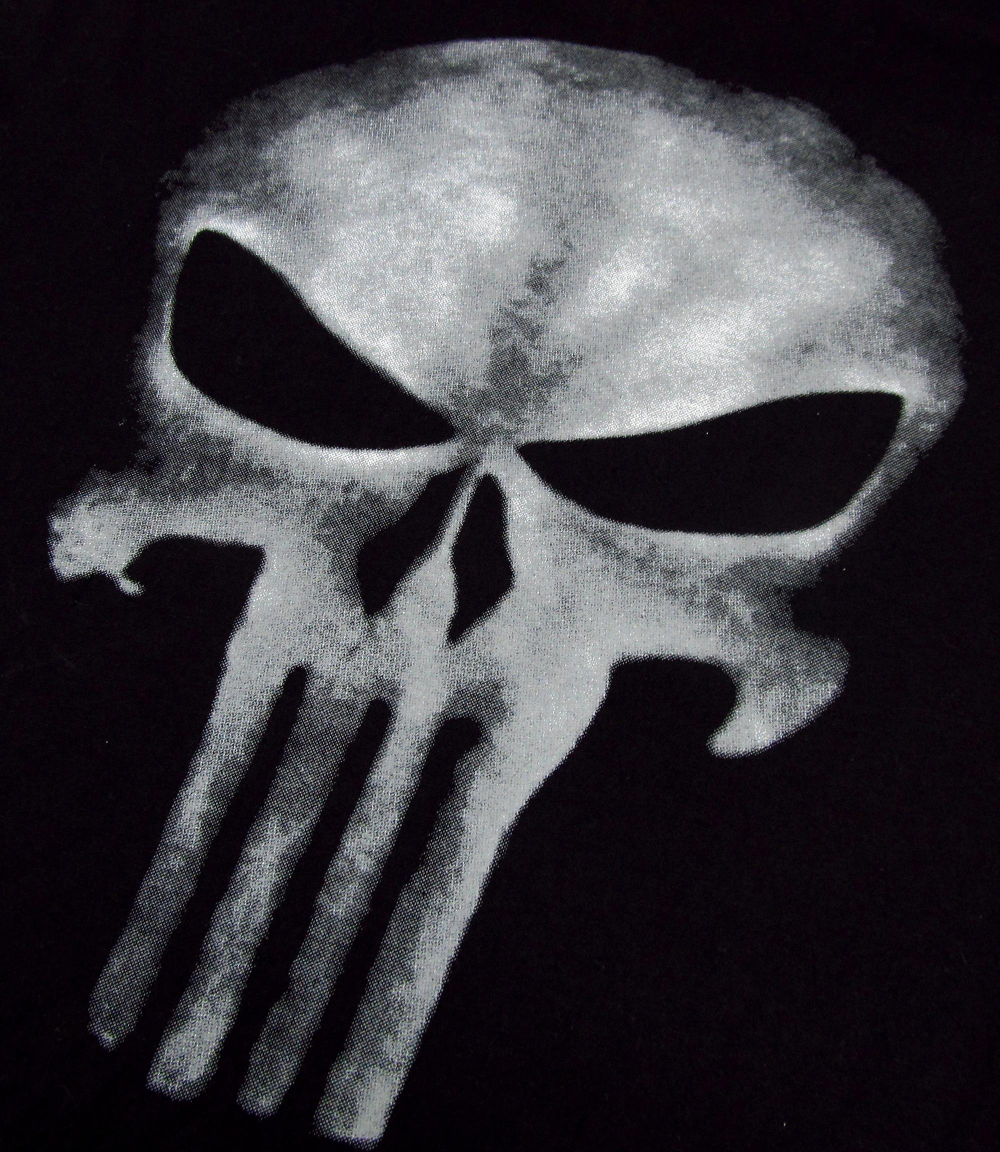 Футболка мужская Others THE PUNISHER